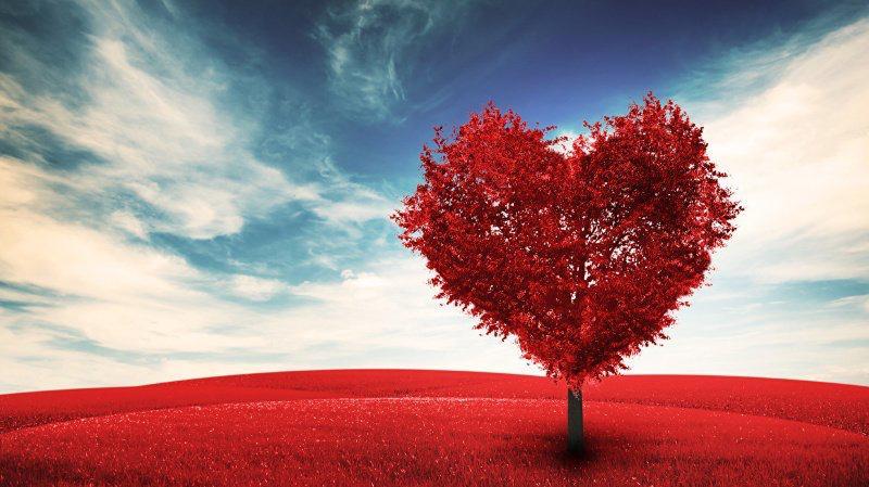 Un peu d'amour !   Bientôt la Saint Valentin !